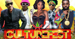 Culture Fest DMV 2020 Featuring Afro B , Iwer George and more