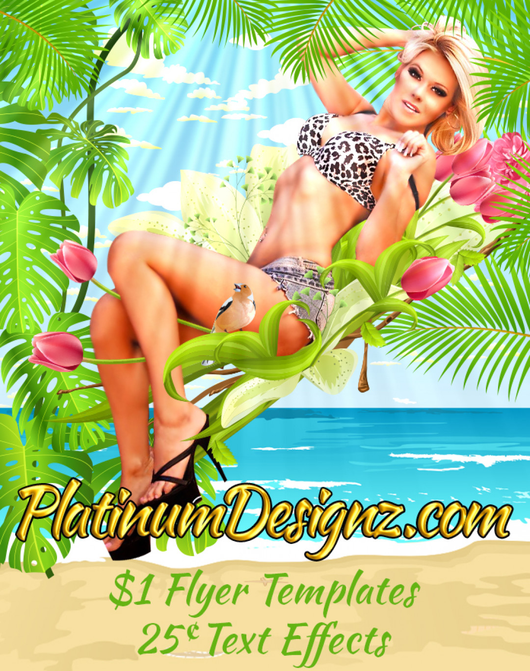 PlatinumDesignz.com