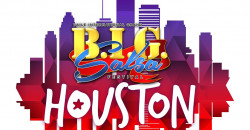 Labor Day Weekend :BIG Salsa Festival Houston 2020