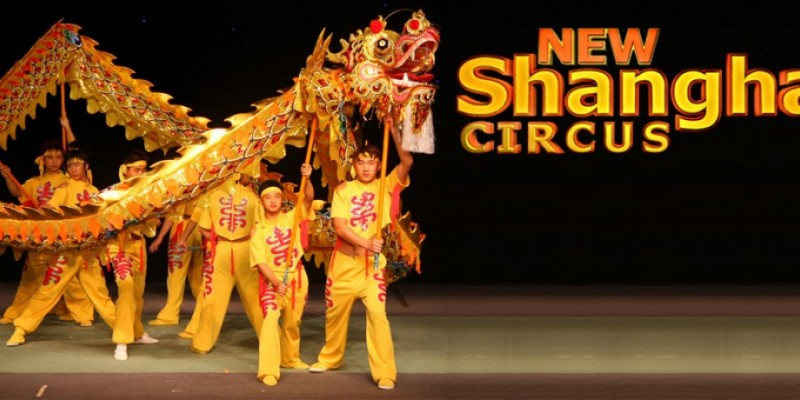 New Shanghai Circus Queens NYC