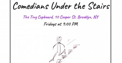 Comedians Under the Stairs---Indoor, In-person Stand Up Show! ,Brooklyn