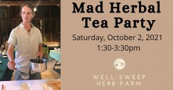 Mad Herbal Tea Party ,Port Murray