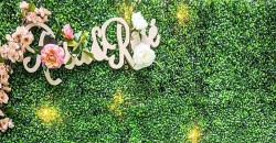 Roses & Rosé Brunch + Day Party ,New York