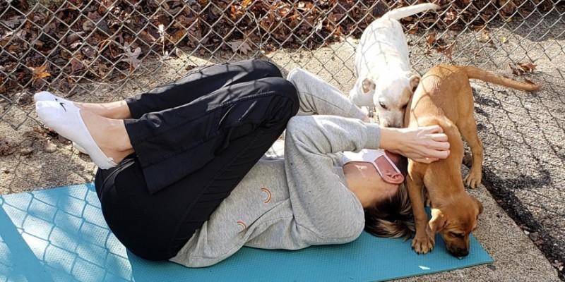 DNYP - Limitless Puppy Poses! ,Cedar Grove