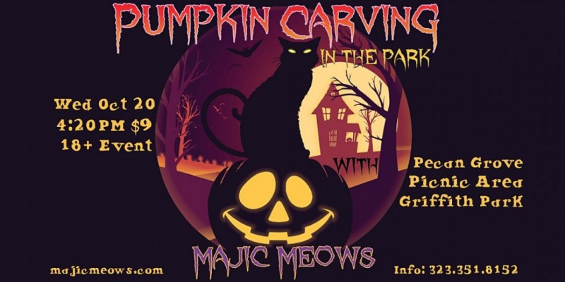 PUMPKIN CARVING IN THE PARK WITH MAJIC MEOWS ,Los Angeles