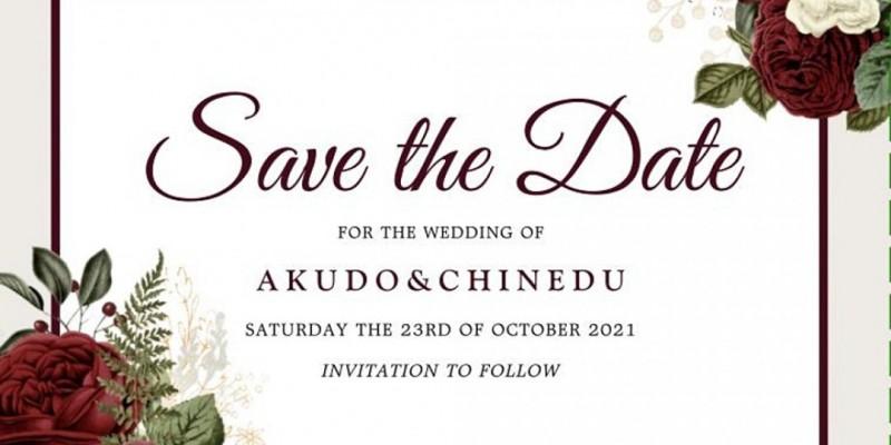 Wedding of Akudo Okoroafor & Chinedu Umeh ,The Bronx