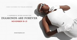 Diamonds Are Forever: A Solo Self-Curated Exhibition By Shrodrick Spikes ,Atlanta