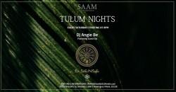 Saturday Nights at SAAM ,Miami