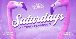 Saturdays at Tipsy Flamingo - Free Drink with RSVP ,Miami